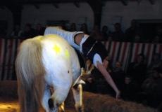 29-akrobater-til-hest