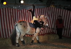 artister-til-hest-5
