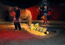 klovn-til-hest-3