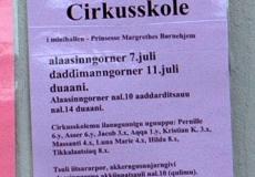 17-plakater