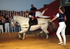 30-akrobater-til-hest
