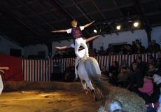 32-akrobater-til-hest