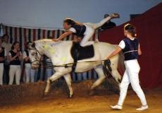 33-akrobater-til-hest