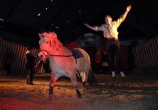 artister-til-hest-3